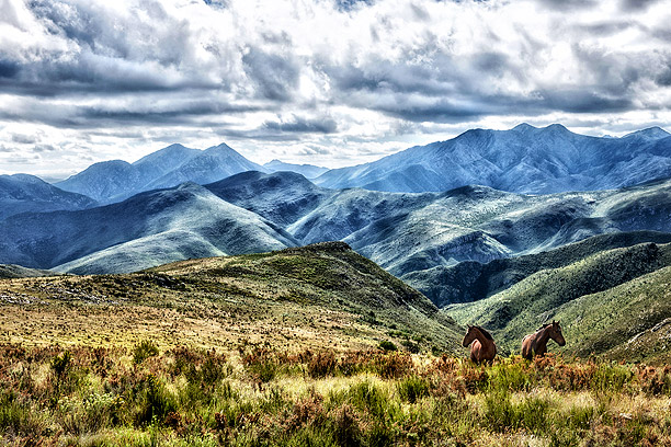 2 Horses in the Baviaanskloof mountains, landscape photography by Ben Bergh Photography